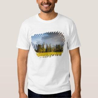 O campo de golfe de Makai em Princeville 2 T-shirts