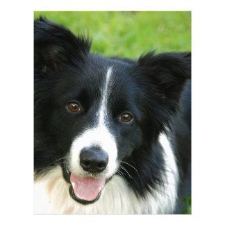 O cão de border collie adiciona o animal de estima modelo de papel de carta