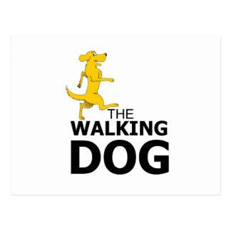 O cão de passeio cartão postal