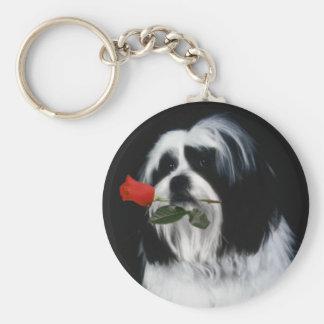 O cão de Shih Tzu Chaveiro