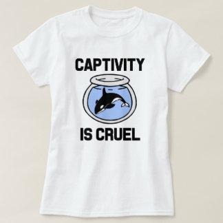 O captiveiro é a camisa das mulheres cruéis