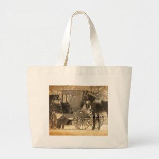 O carrinho antes do cavalo, Amish traz o cavalo em