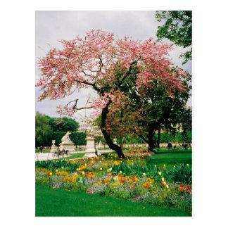 O carrossel jardina cartão