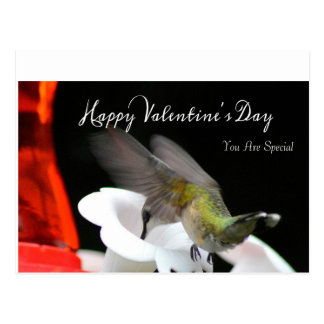 O cartão 2 dos namorados do colibri
