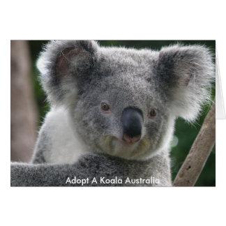 O cartão adota um Koala Austrália
