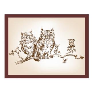 O cartão com imagem engraçada de três corujas cartão postal