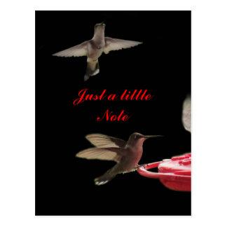 O cartão #ct98721- dos colibris personaliza