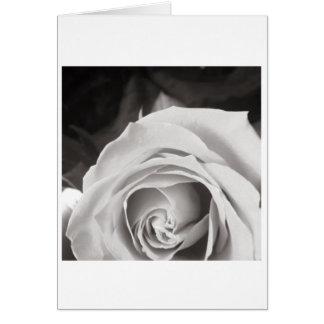 O cartão da Aumentação do Mama