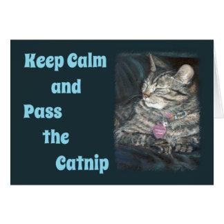 O cartão de aniversário do gato de tigre mantem a