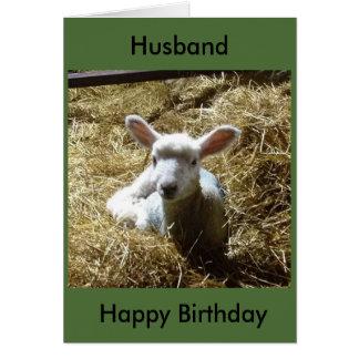 O cartão de aniversário dos carneiros do cordeiro
