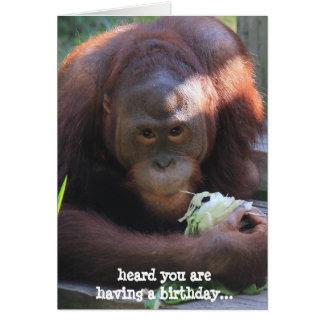 O cartão de aniversário engraçado, orangotango