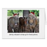 O cartão de Natal da foto de família do cavalo