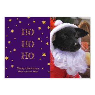 O cartão de Natal da foto do animal de estimação