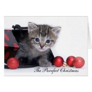 O cartão de Natal de Purrfect
