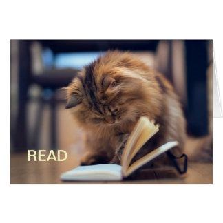 O cartão de nota estudioso do gato