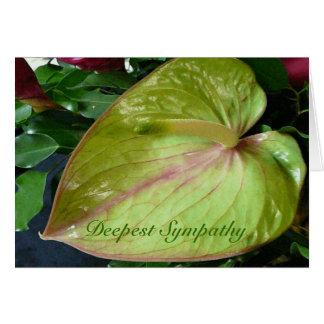 O cartão de simpatia o mais profundo da flor verde