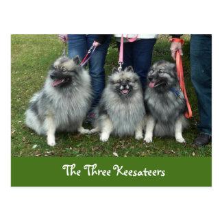 O cartão de três Keesateers