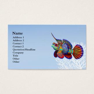 O cartão de visita dos peixes de Dragonet do góbio