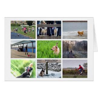 o cartão dos Cão-amantes