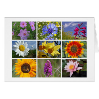 o cartão dos Flor-amantes