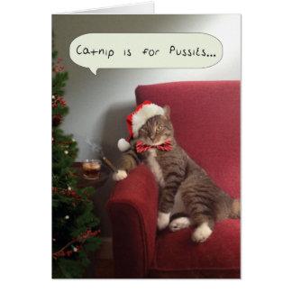 O cartão engraçado do gato do feriado, Catnip é