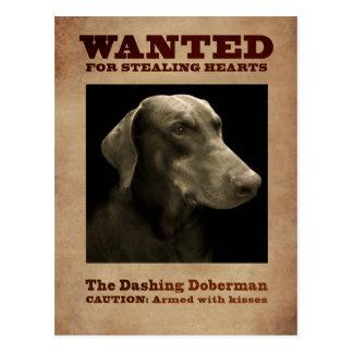 O cartão galhardo do Doberman