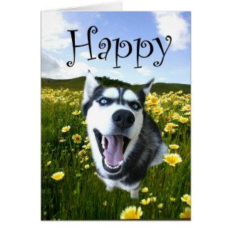 O cartão ronco o mais bonito do feliz aniversario