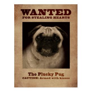 O cartão valente do Pug