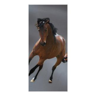 O cavalo do vaqueiro chamou Riboking 10.16 X 22.86cm Panfleto