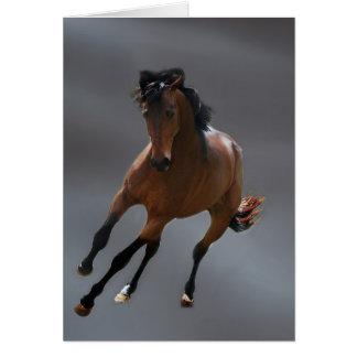 O cavalo do vaqueiro chamou Riboking Cartão Comemorativo