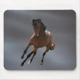 O cavalo do vaqueiro chamou Riboking Mousepad