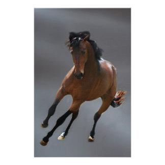 O cavalo do vaqueiro chamou Riboking Papel Personalizados