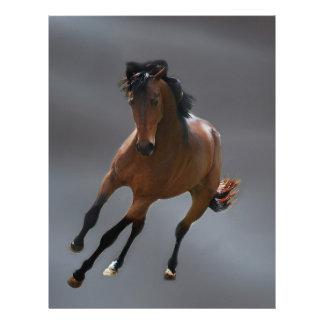 O cavalo do vaqueiro chamou Riboking Modelo De Papel De Carta