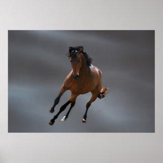 O cavalo do vaqueiro chamou Riboking Poster