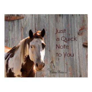 O cavalo & o cartão de Barnwood cutomize