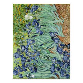 O centro das íris de Van Gogh sumário expirou inst Cartao Postal