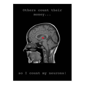 O cérebro humano - cartão