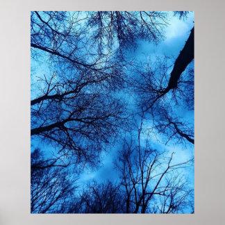 O céu azul em árvores pretas fotografa o poster