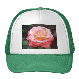 O chapéu com imagem aumentou bonés