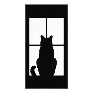 O clique do gato da janela a personalizar obtem cartão com foto