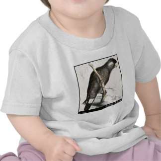O Cockatoo do Baudin de Edward Lear Camisetas