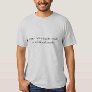 O coelho de coelho endireita o t-shirt