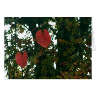 O coração vermelho sae do cartão