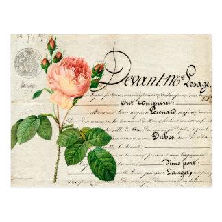 o coral francês das coisas efêmeras do cartão do cartão postal