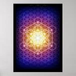 O cubo/flor de Metatron do poster da vida