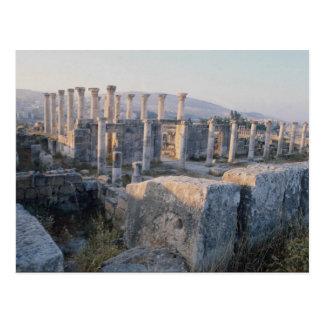 O Decumanus sul, Jerash, Jordão Cartão Postal