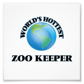 O depositário de jardim zoológico o mais quente do foto artes