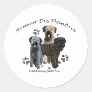 O DES Flandres de Bouvier não pode ter apenas um Adesivo