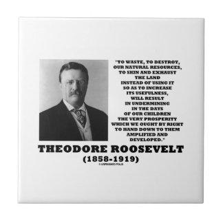 O desperdício de Theodore Roosevelt destrói recurs Azulejos De Cerâmica
