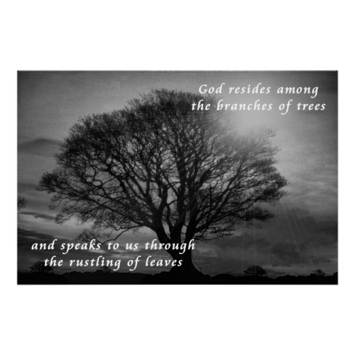 O deus reside dentro dos ramos das árvores posters